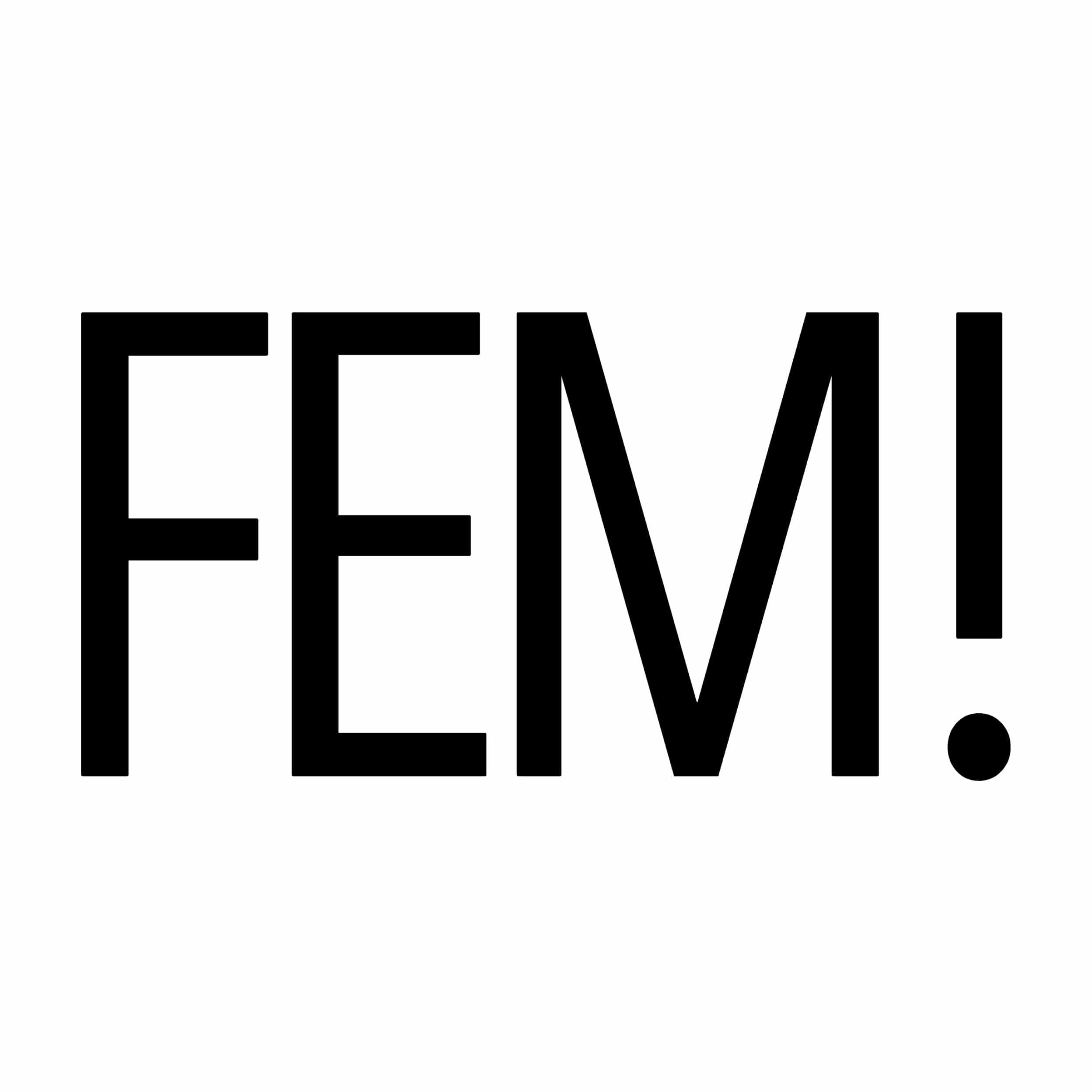 fem-vrouwen-netwerk-stedendriehoek